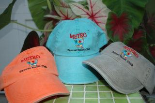 Metro Hat - Light Blue ($15)
